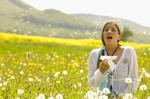 Woman sneezing with tissue in meadow-779344