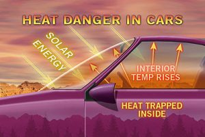 Heat dangers in car