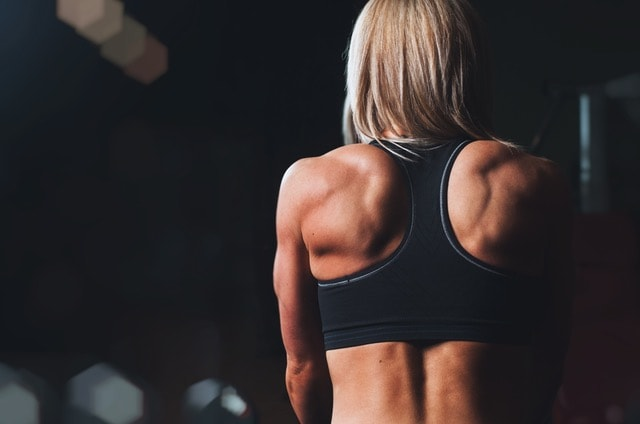 Top Exercises for Your Back